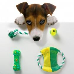 Παιχνίδια για Σκύλο