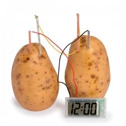 Πείραμα Ρολόι Πατάτα