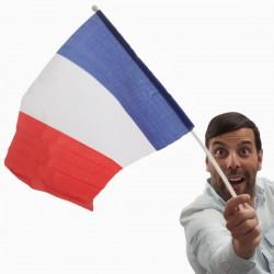 Σημαία της Γαλλίας με Κοντάρι (46 x 30 εκ)