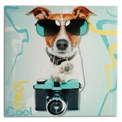 Πίνακας Σκύλος Φωτογράφος 40 x 40 cm