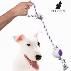 Σχοινί με Μπάλα για Σκύλους Pet Prior