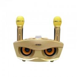 Ασύρματο καραόκε με 2 μικρόφωνα και ηχείο 20W – SDRD SD-306 χρυσό